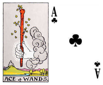 The Ace of Wands and the Ace of Clubs.